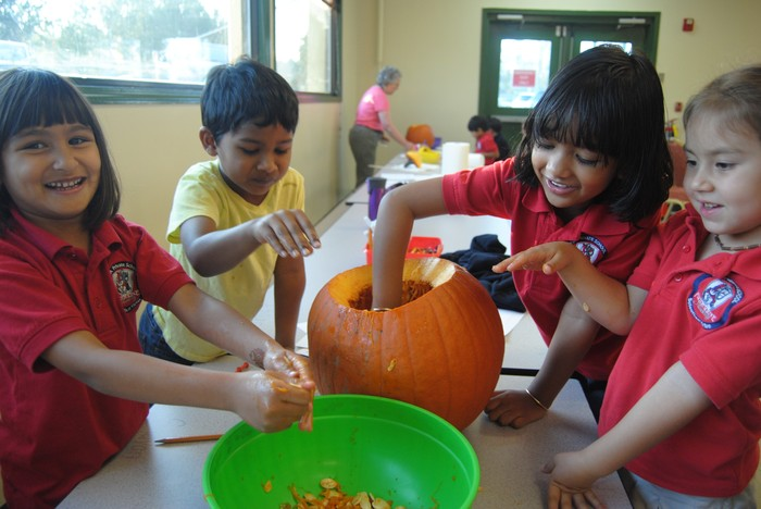 Fulton Science academy learning math with pumpkins1